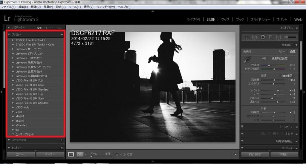 第3回】プリセットについてとVSCOfilmレビュー -Lightroom実践